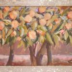 Apelsīnu dārzs